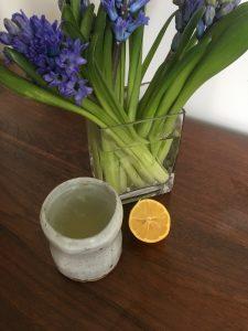 5 Benefits of Lemon Water | Ridge's Stitches | Health Coach